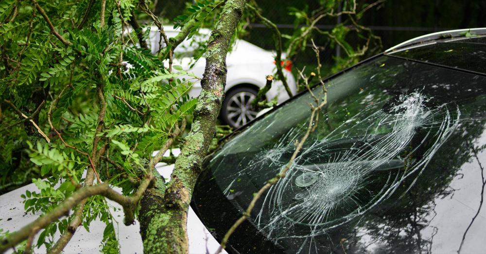 Vikten av en bilförsäkring